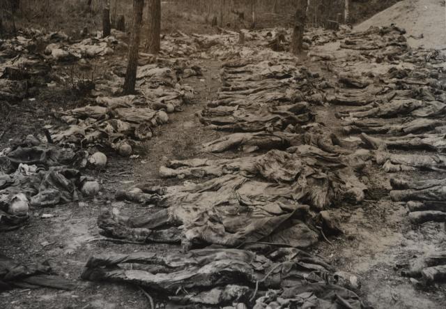 Katyn-1940-groapa-comuna-ofiteri-polonezi-2-flacaratv.md-